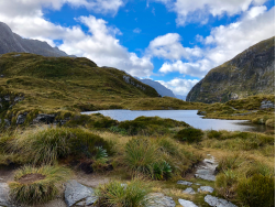 Milford Track, 5 Tage