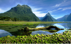 South Island – Pure Nature
